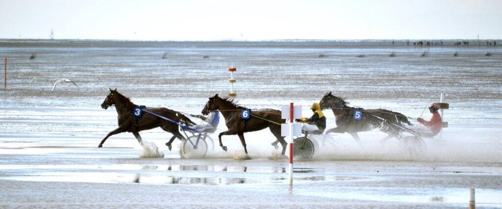 Duhner Wattrennen Veranstaltung in Cuxhaven