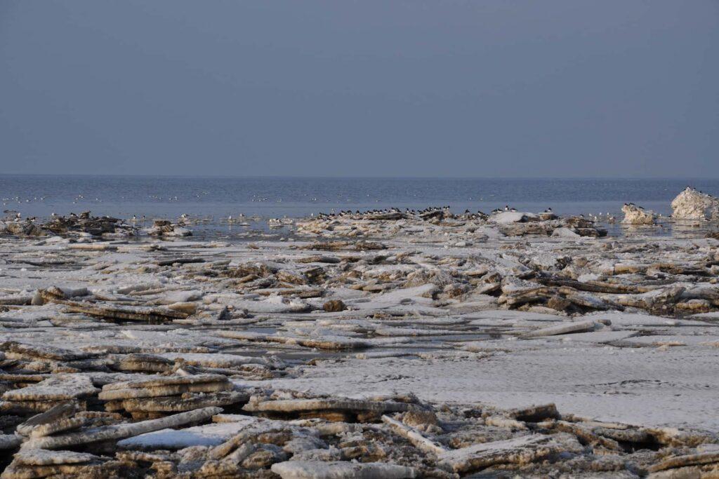 Eisschollen auf der Nordseeküste