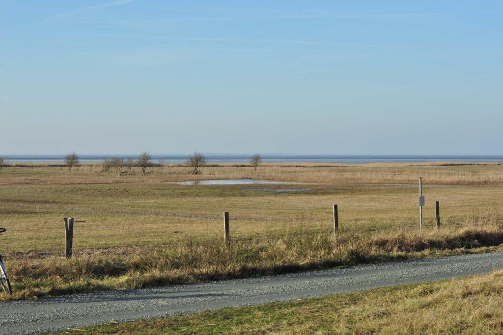 Radstrecke durch die Küstenheide in Cuxhaven